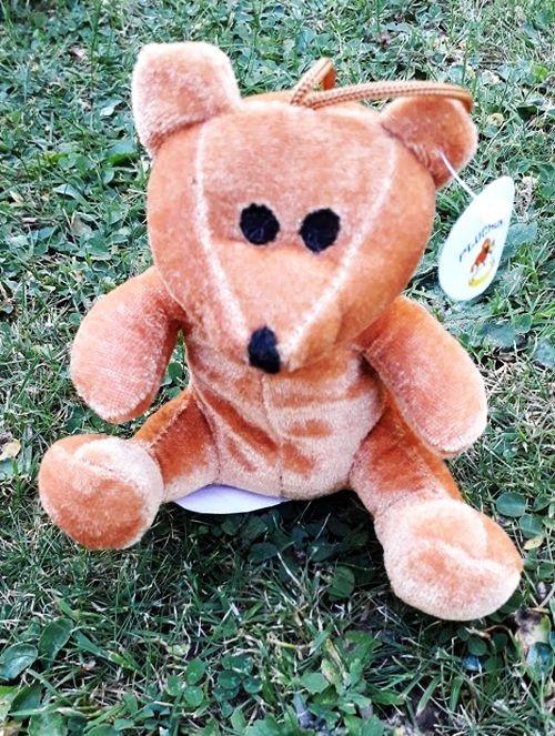 Mon petit ours marron...
