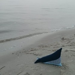 Le doudou-coussin de baleine